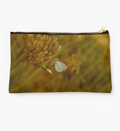 Vintage Style Butterfly Studio Pouch